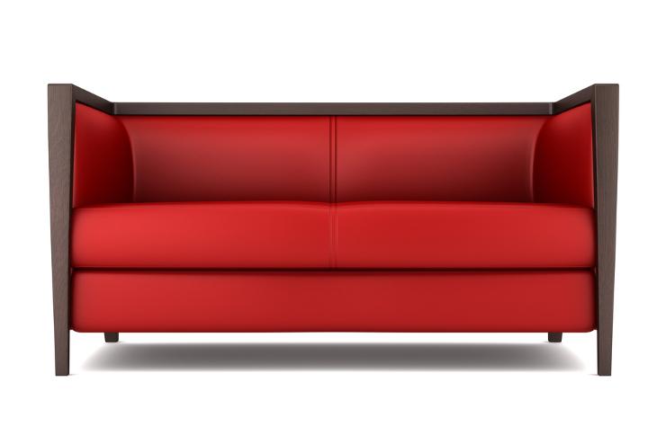 Auch ein rotes Ledersofa kann sehr schick sein. (Bild: © Maksym Bondarchuk - shutterstock.com)