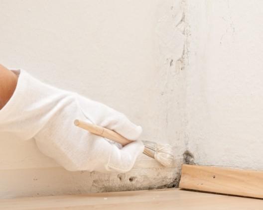 Schimmel und Feuchtigkeit im Haus vermeiden
